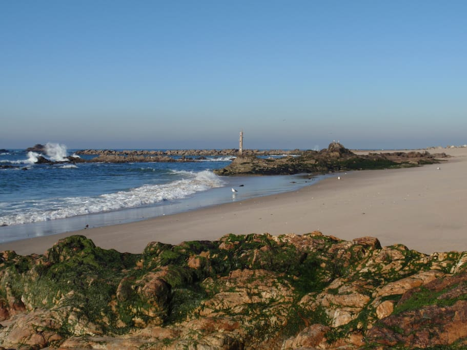 vila do conde buddhist dating site The site also has a museum that displays objects found by archaeologists during their  portugal, alcácer do sal,  portugaljpg|beach in vila nova de.