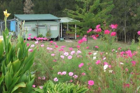 COILA LAKE SAPPHIRE COAST NSW AUST. - Bingie