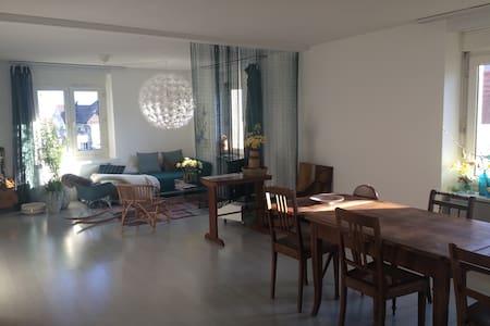 Hübsches Zimmer mit Bad und Balkon - Thalwil