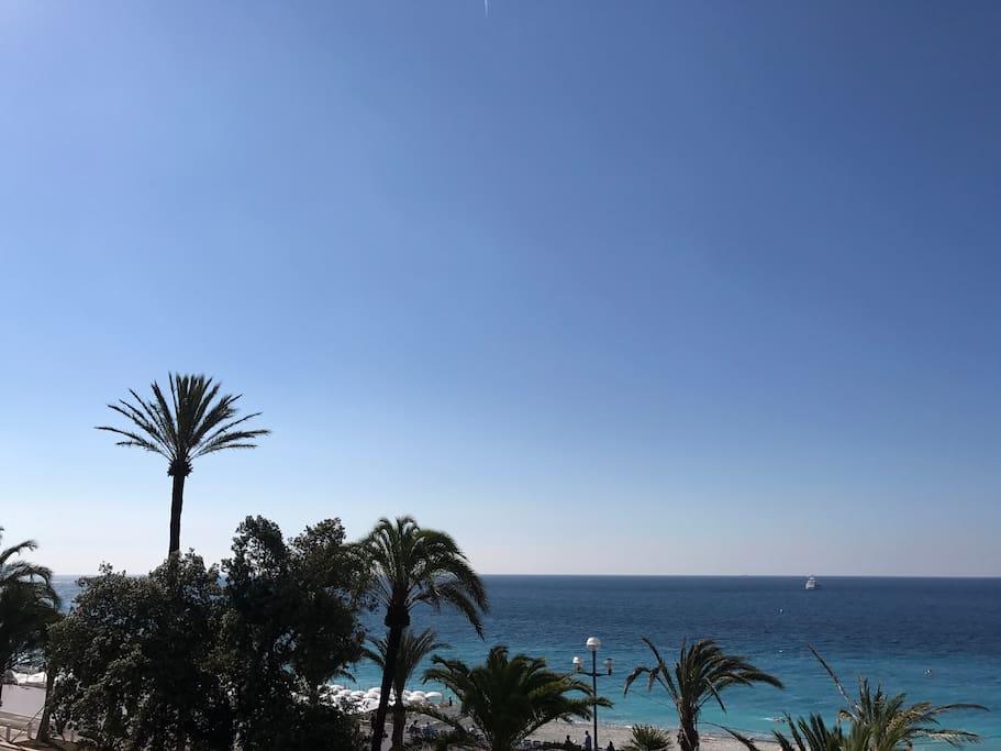 Les palmiers de la Promenade des Anglais et la mer
