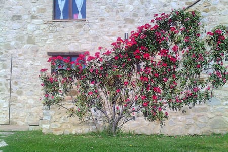 Vacanza Deluxe in Umbria! - Bed & Breakfast