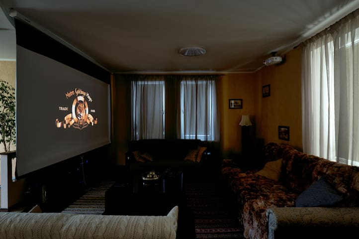 full hd home cinema and hi-end sound system in living room