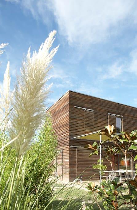 Maison contemporaine en bois cot d 39 uz s maisons for Maison moderne uzes