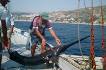 Pesca con la Feluca nello Stretto