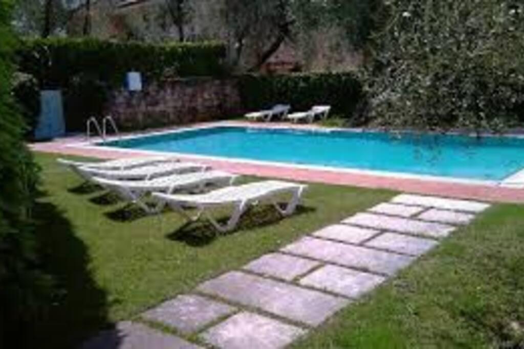 bella piscina con giardino