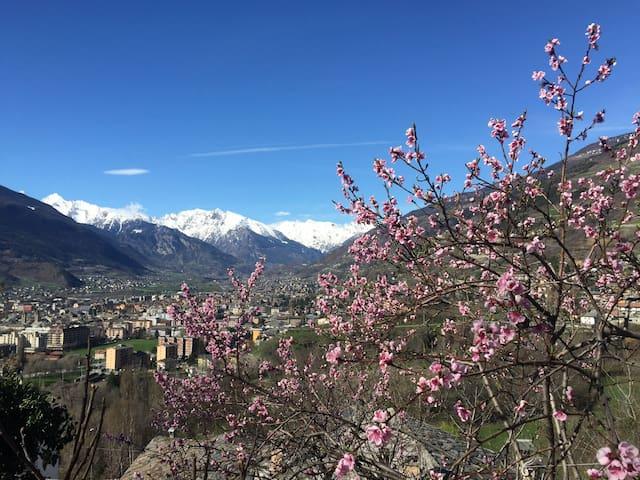 Casa Preferita, ideale per tutti - Aosta