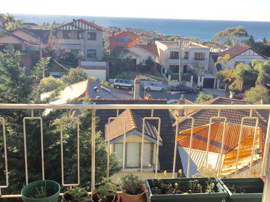 Beautiful private balcony Ocean Views