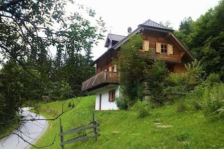 Nice and cozy Mountain cabin in Austria - Predlitz
