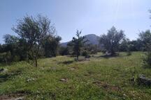 Shambala Sardegna II Ecosostenibile