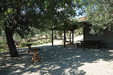 Chalet among olive trees with view of the sea - Province of Catanzaro - Villa