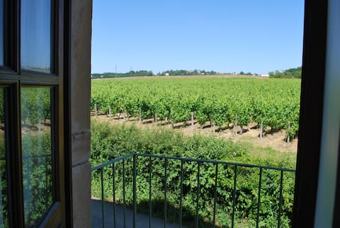 Studio in the middle of vineyards