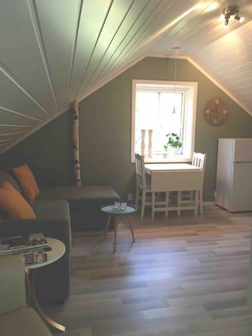 Overnatting, 3 km fra flyplass Torp-Sandefjord