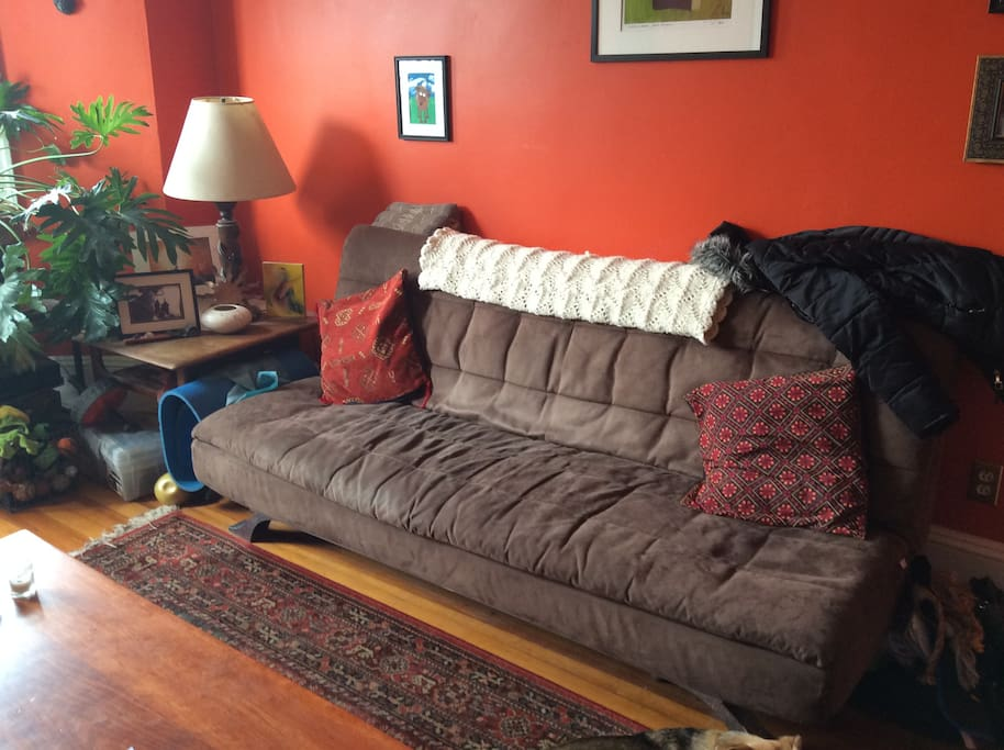 Right side Living room w/pull out futon