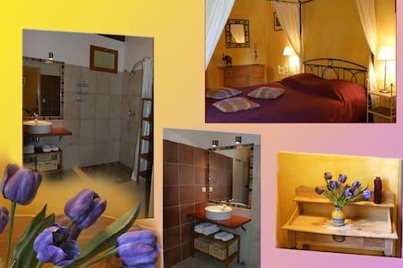 Calme et piscine face aux Pyrénées - Bruges-Capbis-Mifaget - Bed & Breakfast