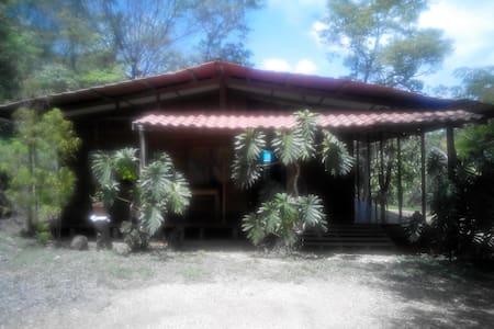 Habitacion en cabaña tropical - Curime