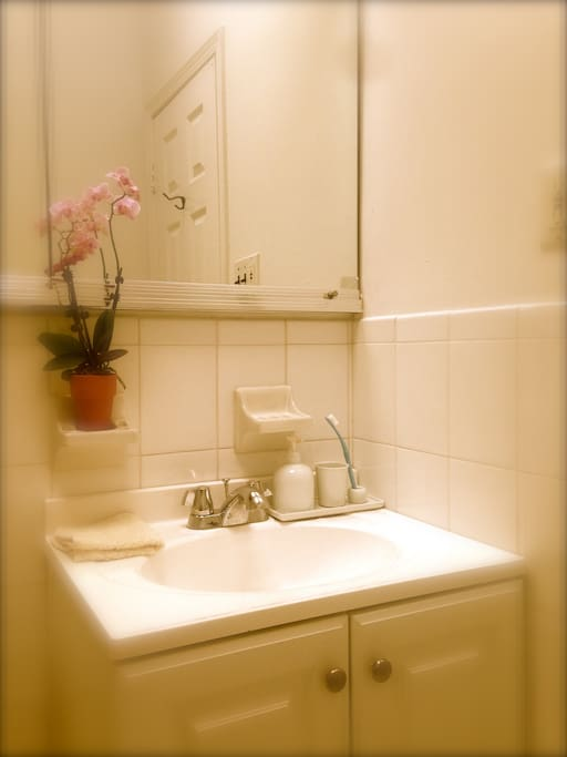 Cozy clean private bedroom bath lgbtqia welcome apartments for rent in queens new york for Rooms for rent in nyc with private bathroom