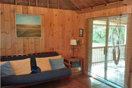 Studio Cottage on Outter Cape! - Cabin