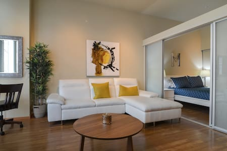 Modern 1 Bedroom apartment in a modern newly renovated building just a few blocks away from the convention center