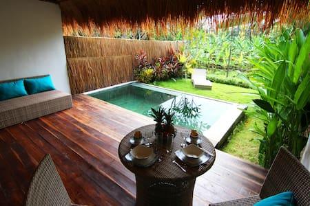 Tropical Suite Villa private pool 4 - North Kuta - Bed & Breakfast