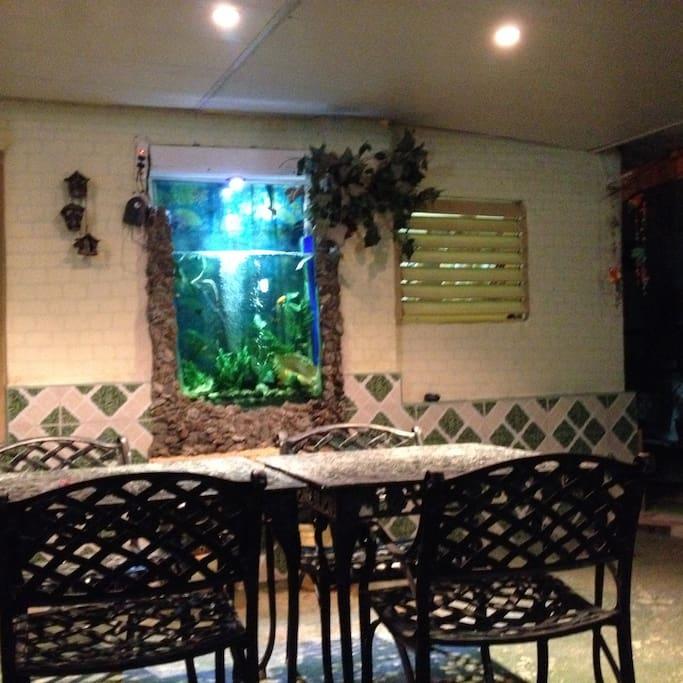 "Terraza ""La Tilapia Alumbrada"""