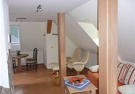 Modern ausgestattete Ferienwohnung - Hohenwarte - Apartment - 1