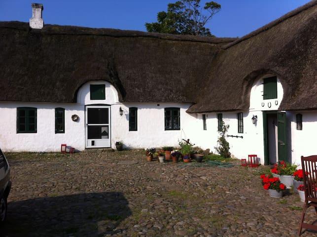Værelse på smuk gård ved Vadehavet - Store Darum, Bramming - House