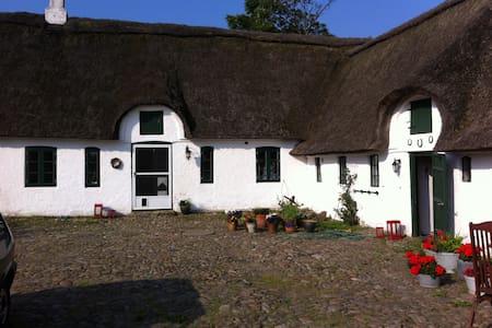 Værelse på smuk gård ved Vadehavet - Store Darum, Bramming - Casa