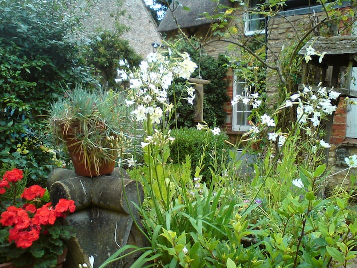 Old Toms Bed and Breakfast. Steeple Aston