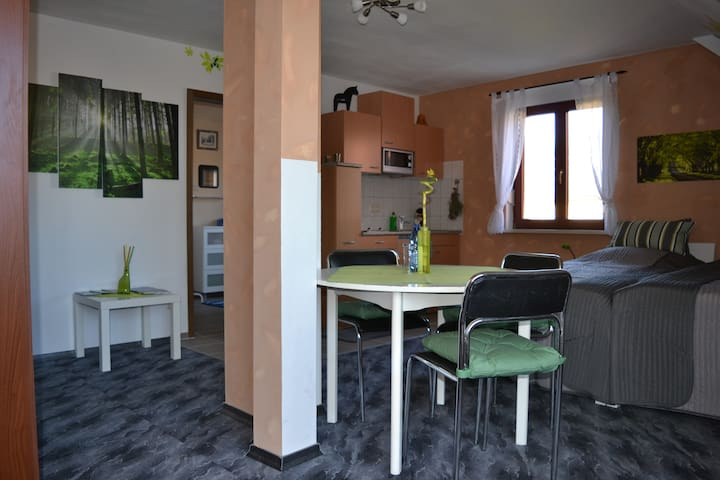 Holiday apartment at historic farm - Wermsdorf - Apartmen