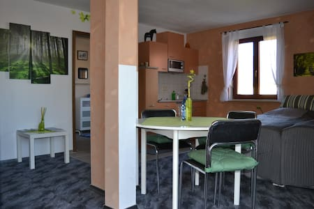 Holiday apartment at historic farm - Wermsdorf
