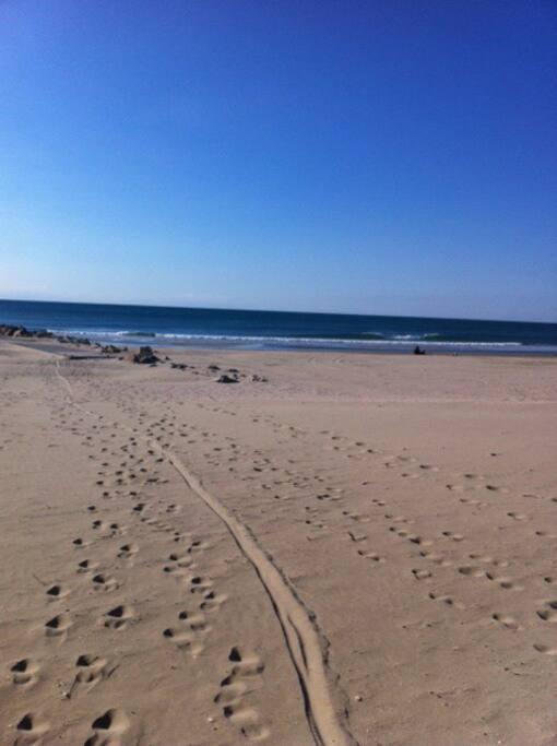 Plage de sable fin à 100 m
