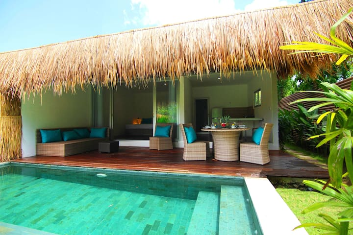 Tropical Double Suites Villa & view