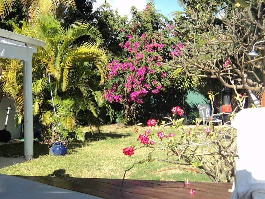 petit jardin avec activités sportives: vélo appartement, table ping pong, kayak..