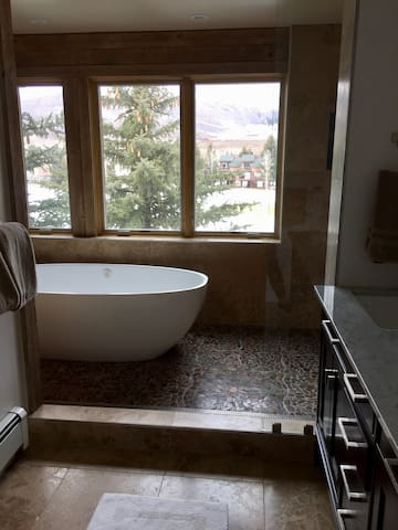 Completely renovated master bath