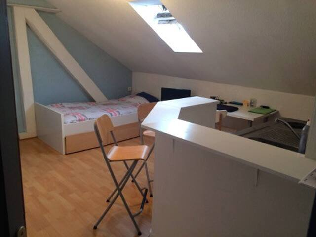 studio metz flats for rent in metz grand est france. Black Bedroom Furniture Sets. Home Design Ideas