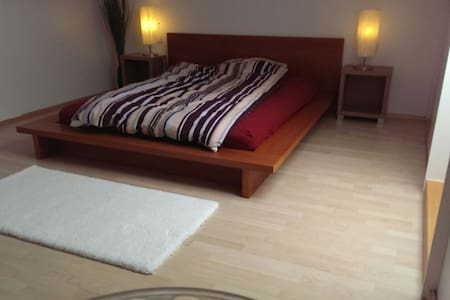 Cozy roof top double bed room - Baltmannsweiler - Dom