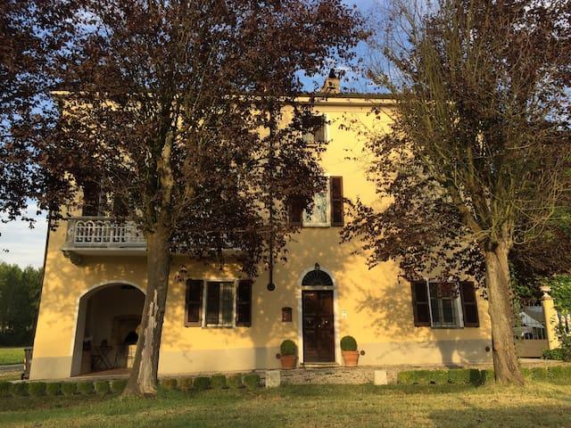 Suggestive colline del Monferrato