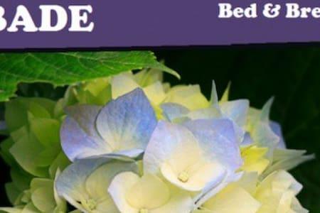 Bed & Breakfast OBADE - Emmeloord - Dům