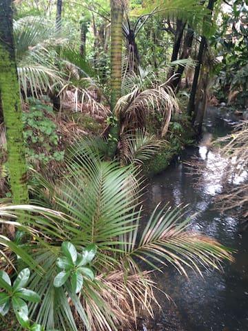 Piha Forest Paradise - Piha - Huis
