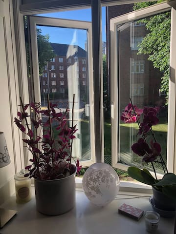 Cozy one room apartment in Frederiksberg