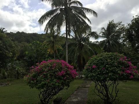 Vacation on a plantation