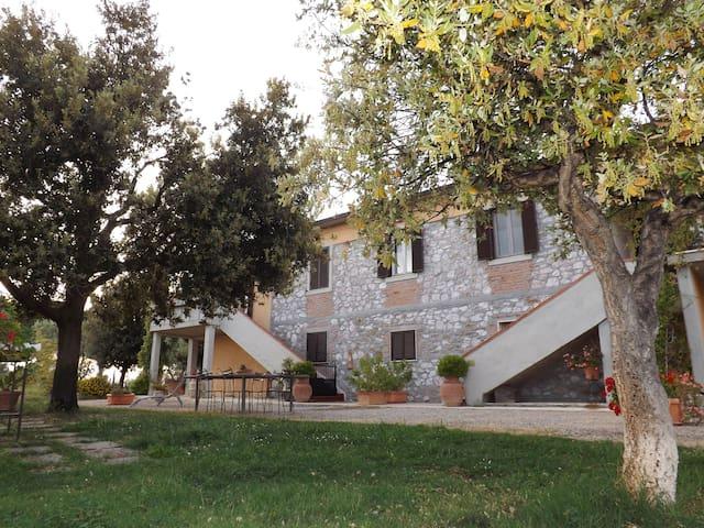 agriturismo san giorgino - Grosseto - House