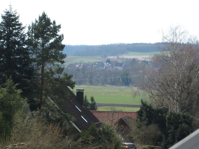 Blick aus dem Fenster in das Schmuttertal