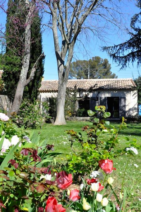 Maison avec piscine et grand jardin maisons louer n mes languedoc roussillon france - Jardin maison minecraft nimes ...
