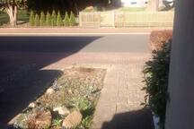 Yard and Driveway