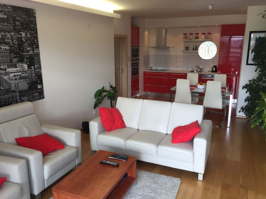 Comfortable living room with fully equipped kitchen