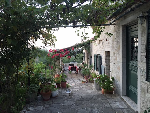 The Olive Grove Villa Mevis - Paxoi - Apartment