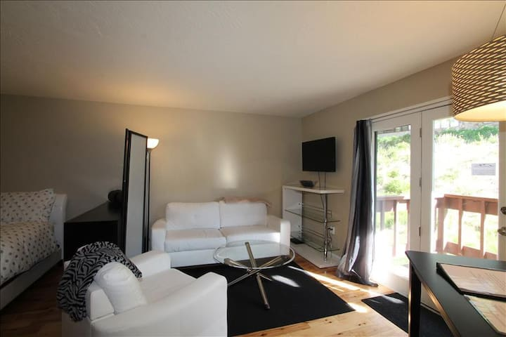 Super cute studio in Skyland, hot tub. 6th night free - Crested Butte - Apartment