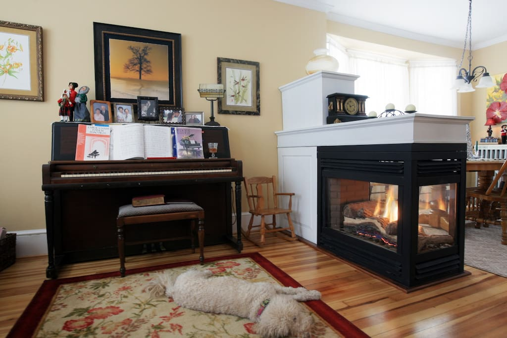 Living Room with Hardwood Floors and Gas Fireplace. (Goldendoodle not included)