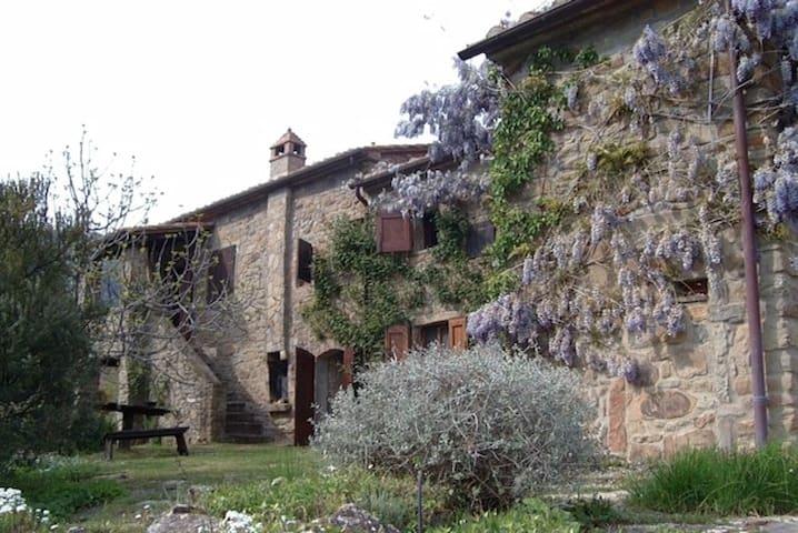 "Estate ""LA PIETRA"" with large Pool - Cortona - Villa"
